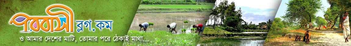 পরবাসী ব্লগ