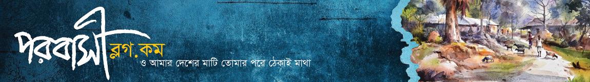 parobashiblog logo